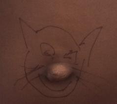 bellybutton_cat